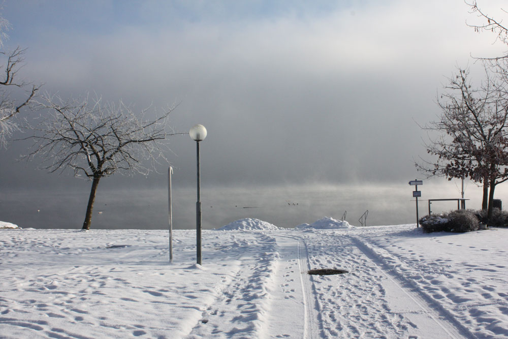 winterlandschaft neumarkt am wallersee
