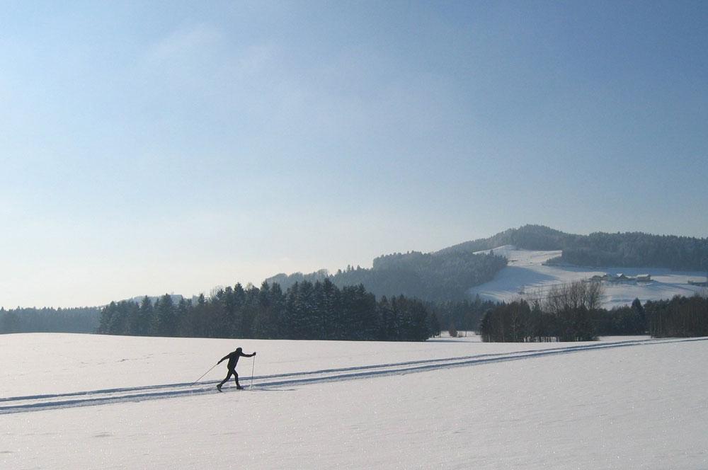 winterlandschaft langlaufen neumarkt am wallersee